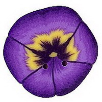 JABCo Flora  2223.S Small Purple Pansy