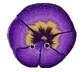 JABCo Flora  2223.T Tiny Purple Pansy