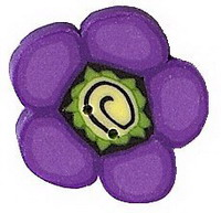 JABCo Sunshine & Shadows Collectionss1007.S Small Purple Daisy