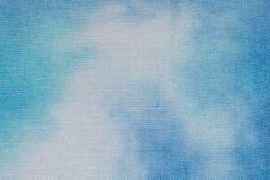 Crossed Wing Collection Fabric24 x 27 Sky