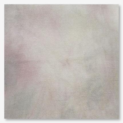 Picture This Plus Evenweave Fresco
