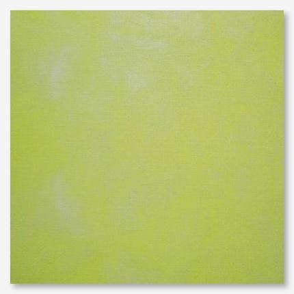 Picture This Plus Evenweave Kermit