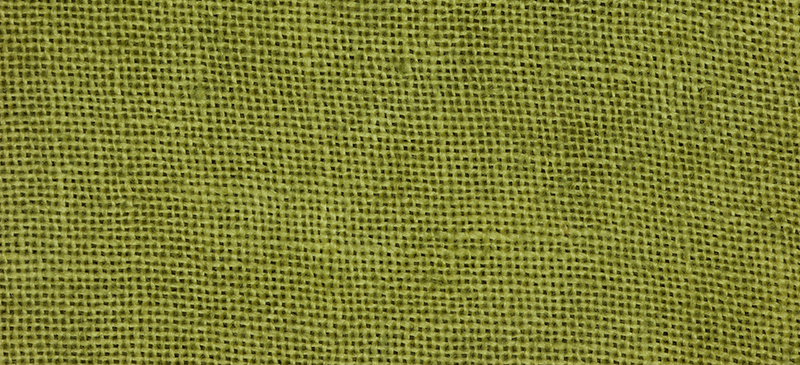 Weeks Dye Works 30 Count LinenF2205 Grasshopper