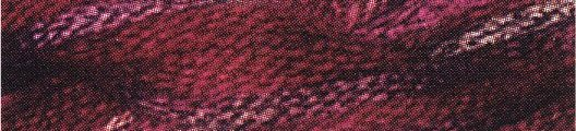 Caron Collection Waterlilies0101 Cherry