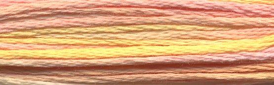 DMC Color Variations4100 Summer Breeze