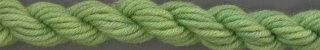 Gloriana Lorikeet200W4 Leaf Green Medium