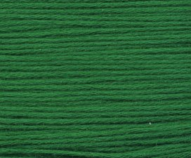 Rainbow Gallery Mandarin Floss M881 Dark Christmas Green