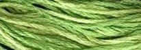 Valdani Variegated Floss O0019 Spring Greens