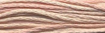 Weeks Dye Works Floss1134 Cherub