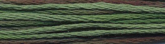Weeks Dye Works Floss 4135 Foilage