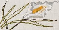 Permin Kits129632 ~ Flower ~ 11 count Aida