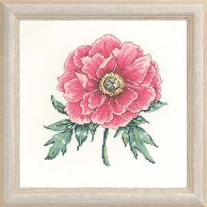Permin Kits705552 ~ Rose Peony ~ 26 count Linen