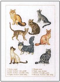 Permin Kits706402 ~ Cats ~ 30 count Linen