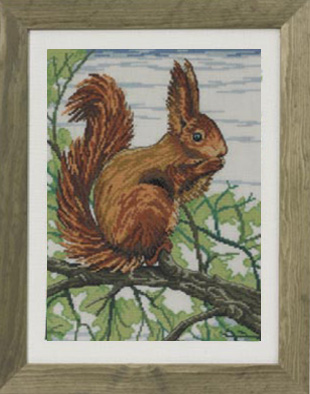 Permin Kits903333 ~ Squirrel ~ 14 count Aida
