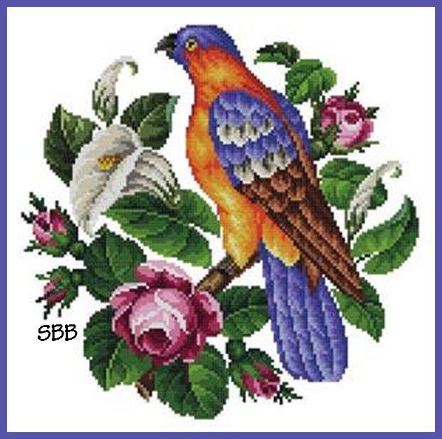 Antique Needle Work Designs33574 Berlin Woolwork Parrot