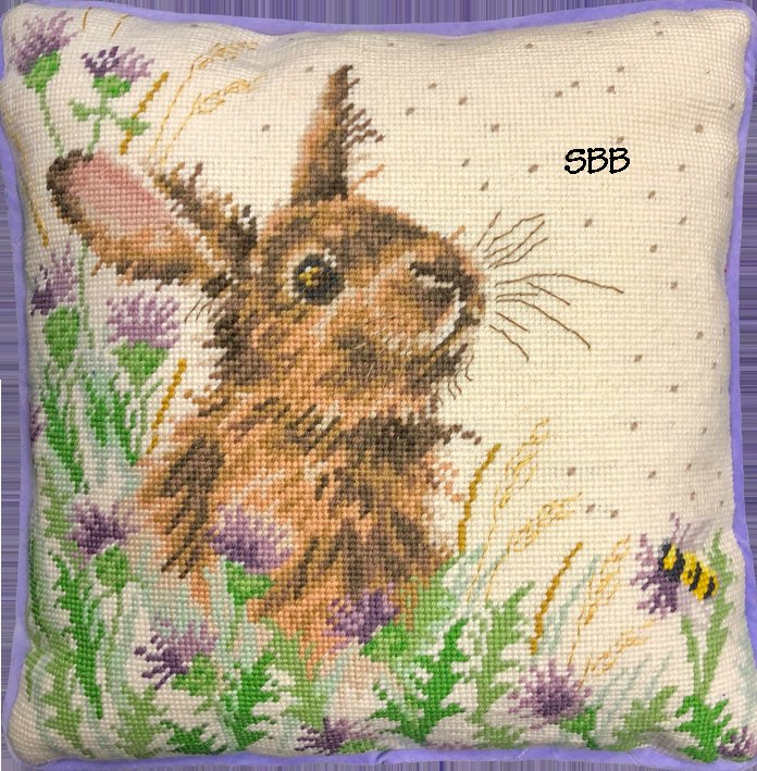 Bothy Threads Kits BTTHD30 The Meadow ~ Hannah Dale ~ 10ct Printed Canvas