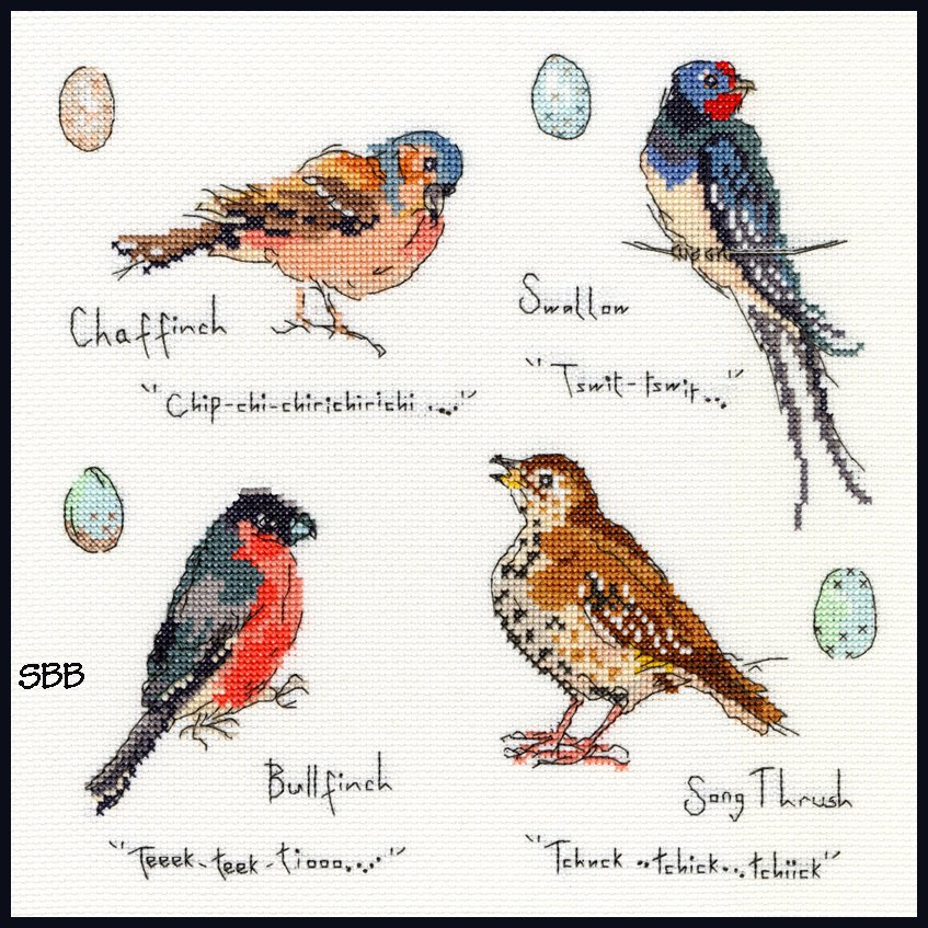 Bothy Threads Kits BTXMF3 Garden Birds 3 ~ Madeleine Floyd ~ 14ct White Aida