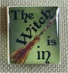 Designs By Lisa Limited Editions The Witch Is In Green Needle Magnet