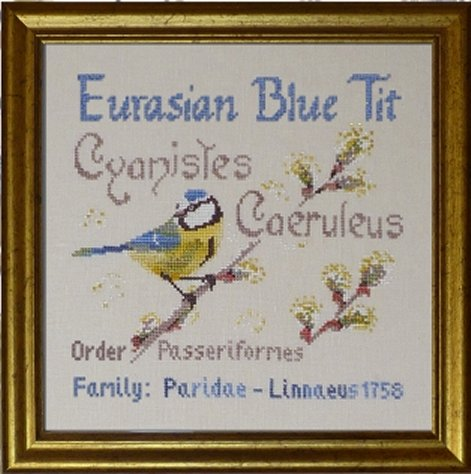 Filigram A103 Eurasian Blue Tit