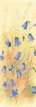 Heritage Crafts HC0900 John Clayton ~ Flower Panels ~ Scotch Harebells