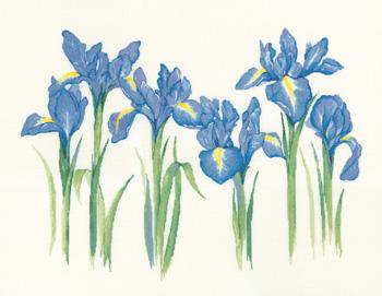 Heritage Crafts HC1143 Sue Hill Collection ~ Irises
