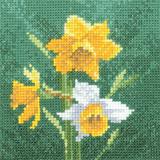 Heritage Crafts Kits HCK0494 Aida John Clayton ~ Mini Flowers ~ Mini Daffodil