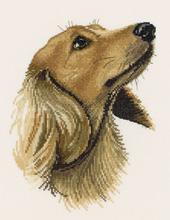 Heritage Crafts Kits HCK0781 Pauline Gledhill ~ Animal Portraits ~ Jasper