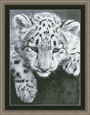 Kustom Krafts Black & White Leopard