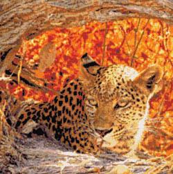 Kustom Krafts Hiding Leopard