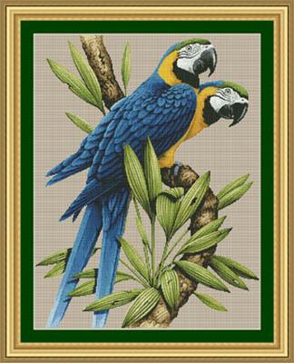 Kustom Krafts Majestic Macaws