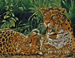 Kustom Krafts Playful Leopards