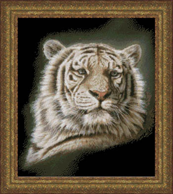 Kustom Krafts Portrait Of A White Tiger