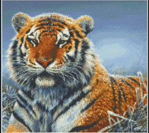 Kustom Krafts Repose (Tiger)