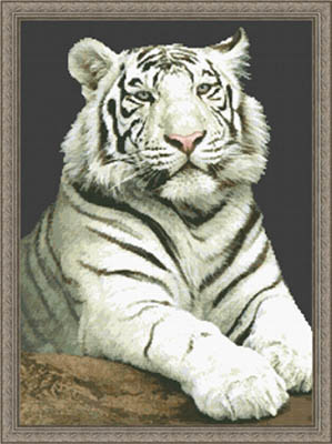 Kustom Krafts The Stare White Tiger