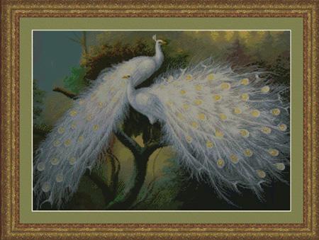 Kustom Krafts White Peacocks