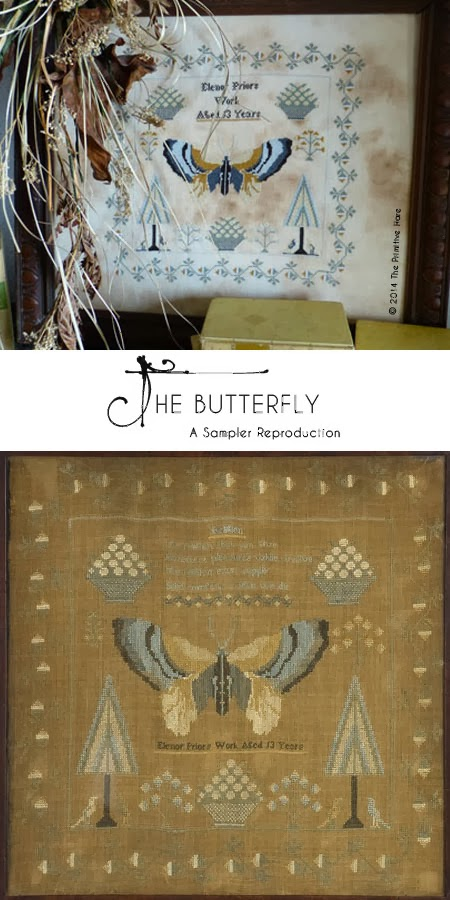 The Primitive Hare Butterfly