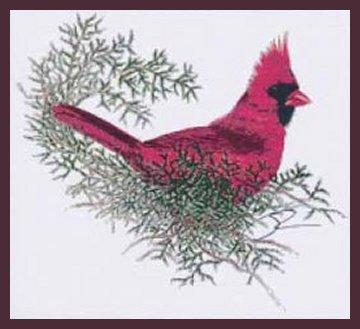 TechScribes Cardinal