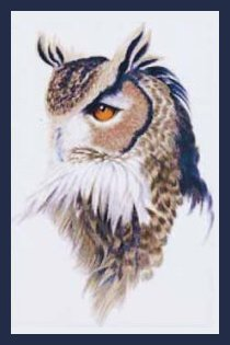 TechScribes Great Horned Owl